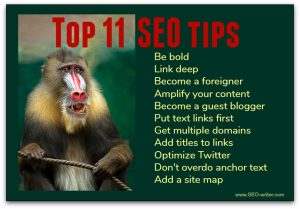 Top 11 SEO tips